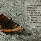 Predestined to be Conformed ~ Romans 8:29 by Robin Clifton