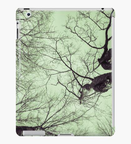 Junctions [iPad case] iPad Case/Skin