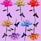 Rose Garden by trash