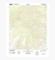 USGS TOPO Map Arizona AZ Willow Mountain 20111031 TM Photographic Print
