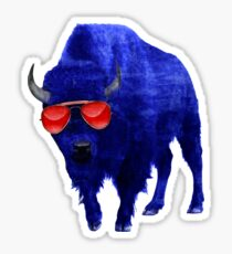 716 Bison : Red Frames Sticker