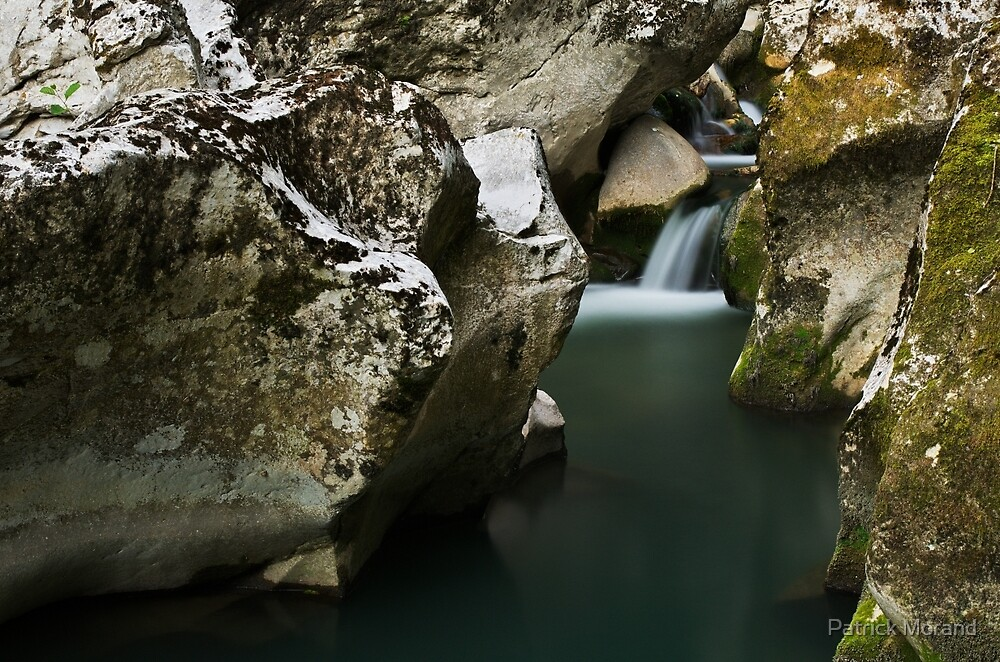 In the river by Patrick Morand
