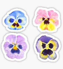 4 little pansies Sticker