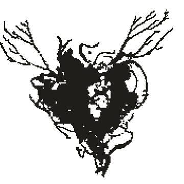 Beyond Two Souls - Heart black by NaiNaH