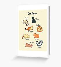 Cat Poses  Greeting Card