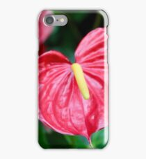 Bright Red Plant iPhone Case/Skin