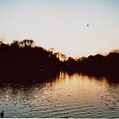 Sunset Over Highfields Park Lake by Maisie Woodward
