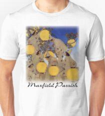 Parrish - The Lantern Bearers T-Shirt