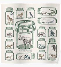 Wildtiere schützen - Artenschutz Poster