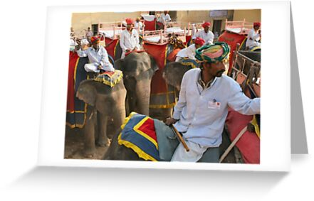Elephants at Jaipur by jonbunston