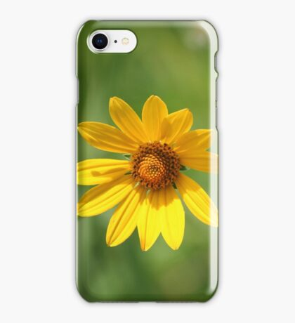 Hey there Sunshine! iPhone Case/Skin
