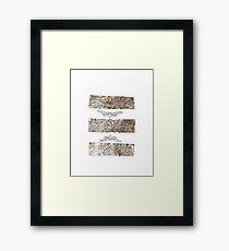 Tin Cicada Framed Print