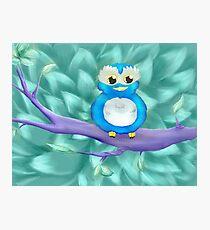Little Magic Owl Photographic Print