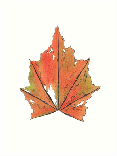 Maple Leaf? by Maison Mendoza