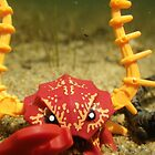 Crab Warrior at the Bottom of the Sea by Shauna  Kosoris