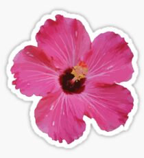 Tropical Pink Flower Graphic Sticker