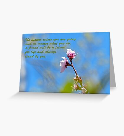 Friends Greeting Card Greeting Card
