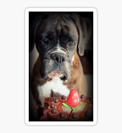 Seufz ... Wunsch war echt .... Boxer Dogs Series Sticker