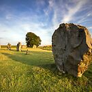 Avebury Summer 2 by Angie Latham