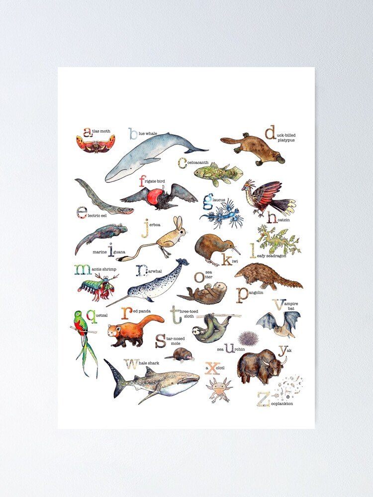 Alternate view of A to Z of Amazing Animals Poster