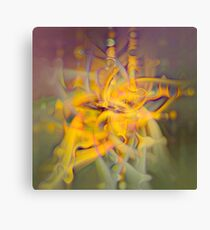 A Kinder, Gentler Abstract on Drugs Canvas Print