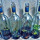blue bottles  by Rob by redqueenself