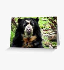 Spectacled Bear Greeting Card