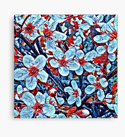 Red and turquoise flowers Canvas Print