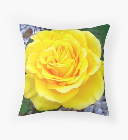Golden Yellow Rose with Garden Background Throw Pillow