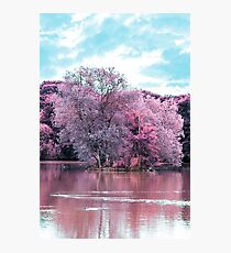 Colouful Island Photographic Print