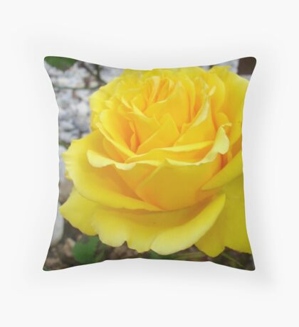 Beautiful Yellow Rose with Natural Garden Background Throw Pillow