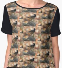 Carolina Chickadee On Rock Women's Chiffon Top