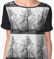 a great old tree Women's Chiffon Top