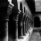 the cloisters by lastgasp