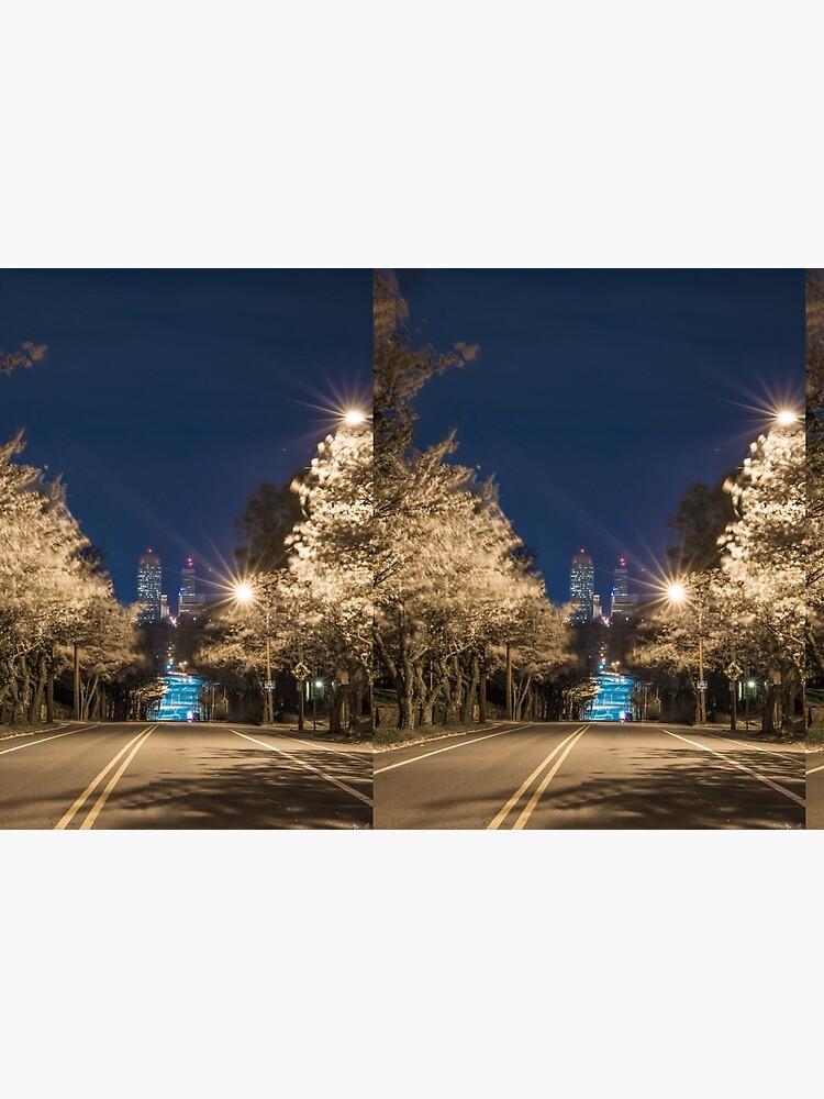 Silent Main Street Winston Salem  by NerdFox