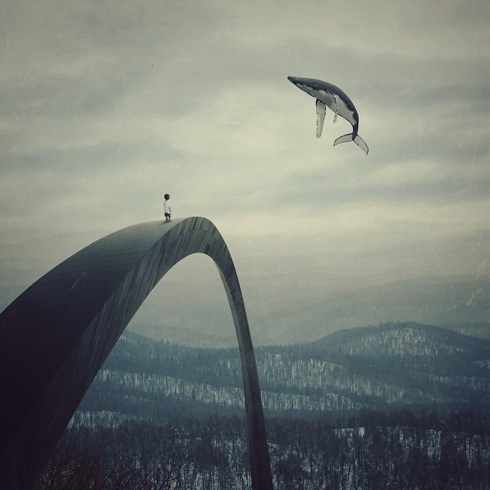 Boy and the flying whale by albulena panduri