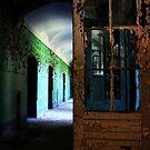 The Door................ by Imi Koetz