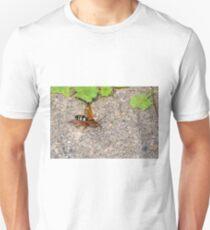 Notabee Unisex T-Shirt