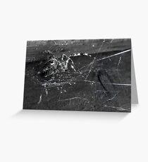 Charcoal OrbWeaver Greeting Card