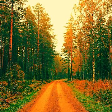 Dirt Road Forest by Lucidwerx