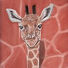 Baby Giraffe by MagsWilliamson