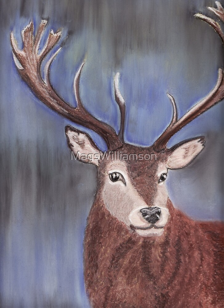 The Stag by MagsWilliamson
