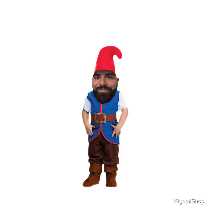 Image Result For Gnome Alone
