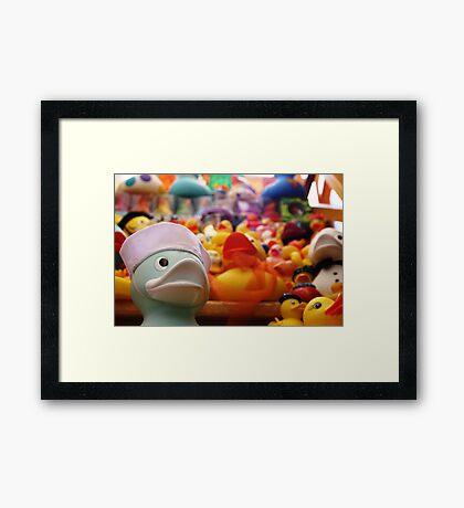 Flock Of Ducks: 02 Framed Print