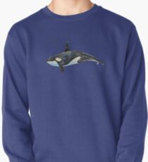 Orca on blue Pullover