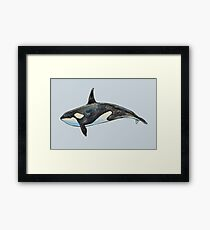 Orca on blue Framed Print