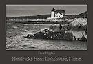 Hendricks Head Lighthouse, Maine by Dave  Higgins