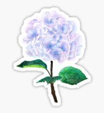 blaue lila rosa Hortensie Sticker