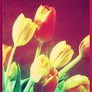 Tulips by Subhrajit Datta