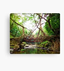 Bridge created by nature Canvas Print